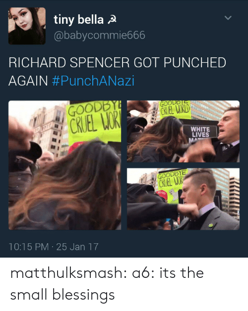 Richard Spencer Got Punched Again: tiny bella a  @babycommie666  RICHARD SPENCER GOT PUNCHED  AGAIN #PunchANazi  WHITE  LIVES  10:15 PM-25 Jan 17 matthulksmash: a6: its the small blessings