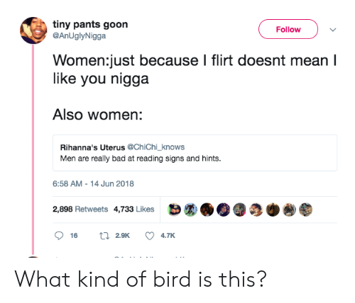 What Kind Of Bird Is This: tiny pants goon  FollowV  @AnUglyNigga  Women:just because I flirt doesnt mean I  like you nigga  Also women:  Rihanna's Uterus @ChiChi_knows  Men are really bad at reading signs and hints  6:58 AM-14 Jun 2018  2,898 Retweets 4,733 Likes What kind of bird is this?
