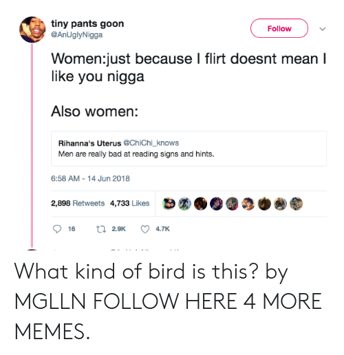 What Kind Of Bird Is This: tiny pants goon  FollowV  @AnUglyNigga  Women:just because I flirt doesnt mean I  like you nigga  Also women:  Rihanna's Uterus @ChiChi_knows  Men are really bad at reading signs and hints  6:58 AM-14 Jun 2018  2,898 Retweets 4,733 Likes What kind of bird is this? by MGLLN FOLLOW HERE 4 MORE MEMES.