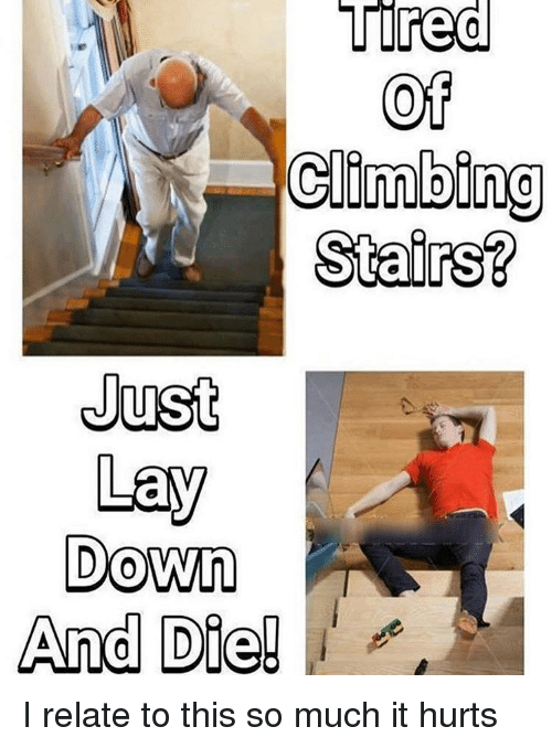 Climbing, Lay's, and Memes: Tired  Tired  Of  Climbing  Stairs?  Just  Lay  Down  And Die! I relate to this so much it hurts