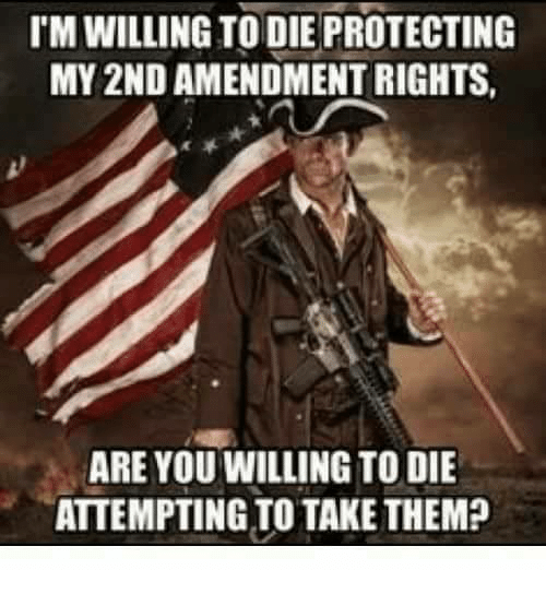 Memes, 2nd Amendment, and 🤖: TM WILLING TO DIE PROTECTING  MY 2ND AMENDMENT RIGHTS  ARE YOU WILLING TO DIE  ATTEMPTING TO TAKE THEM?