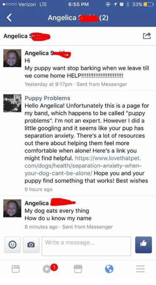 "Being Alone, Comfortable, and Dank: TO 33%  .oooo Verizon LTE  6:55 PM  Angelica  (2)  Angelica  Angelica  Hi  My puppy want stop barking when we leave till  we come home HELP  Yesterday at 9:17pm Sent from Messenger  Puppy Problems  Hello Angelica! Unfortunately this is a page for  my band, which happens to be called ""puppy  problems"". I'm not an expert. However l did a  little googling and it seems like your pup has  separation anxiety. There's a lot of resources  out there about helping them feel more  comfortable when alone! Here's a link you  might find helpful  https://www.lovethatpet.  com/dogs/health/separation-anxiety-when-  your dog-cant-be-alone/ Hope you and your  puppy find something that works! Best wishes  9 hours ago  Angelica  My dog eats every thing  How do u know my name  8 minutes ago Sent from Messenger  O Write a message"