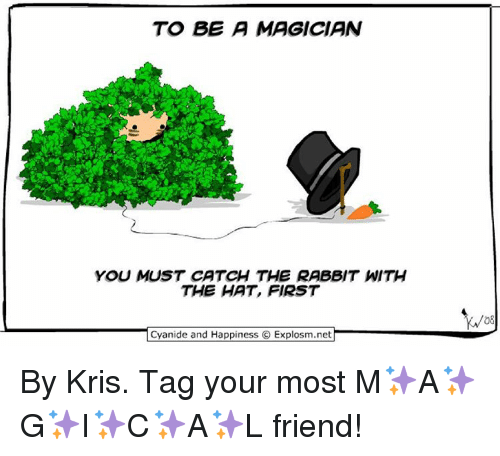 Cyanide And Happieness: TO BE A MAGICIAN  YOU MUST CATCH THE RABBIT WITH  THE HAT, FIRST  Cyanide and Happiness O Explosm.net  08 By Kris. Tag your most M✨A✨G✨I✨C✨A✨L friend!