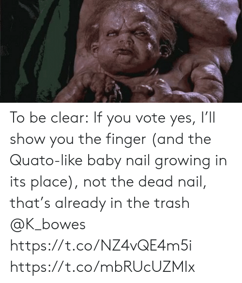 nail: To be clear: If you vote yes, I'll show you the finger (and the Quato-like baby nail growing in its place), not the dead nail, that's already in the trash @K_bowes https://t.co/NZ4vQE4m5i https://t.co/mbRUcUZMIx