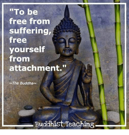 wisdom from suffering There are many painful experiences that are a part of our lives this side of heaven these can be emotional such as disappointment, heartache, betrayal, sadness, loneliness, frustration, righteous anger and indignation.