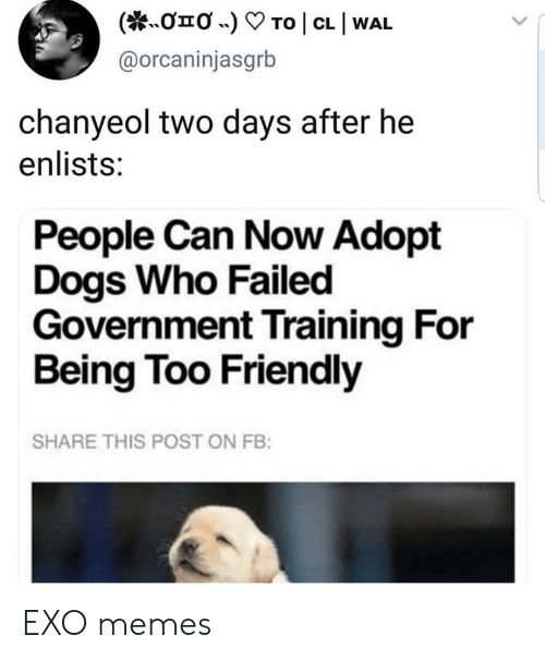 Chanyeol: To | CL I WAL  onO .)  @orcaninjasgrb  chanyeol two days after he  enlists:  People Can Now Adopt  Dogs Who Failed  Government Training For  Being Too Friendly  SHARE THIS POST ON FB: EXO memes