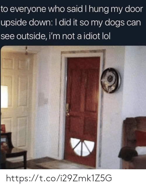 i did it: to everyone who said I hung my door  upside down: I did it so my dogs can  see outside, i'm not a idiot lol https://t.co/i29Zmk1Z5G