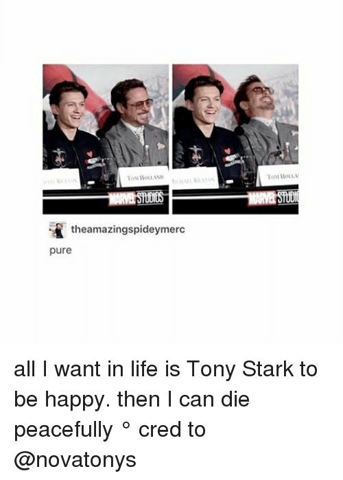 Life, Memes, and Happy: To Hons  theamazingspideymerc  pure all I want in life is Tony Stark to be happy. then I can die peacefully ° 《cred to @novatonys 》