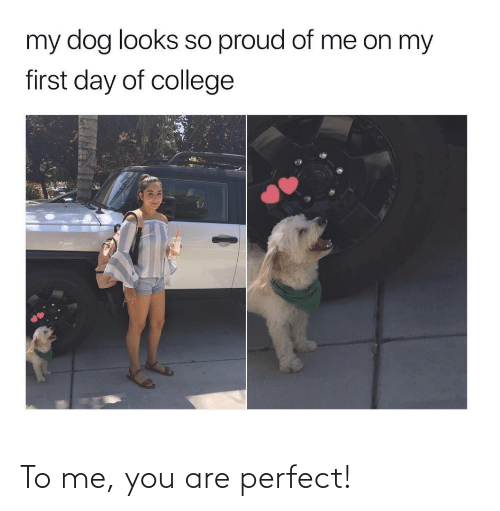 me you: To me, you are perfect!