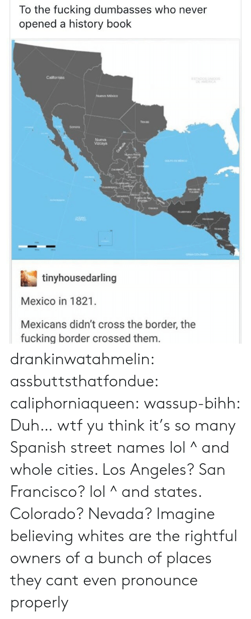 Dumbasses: To the fucking dumbasses who never  opened a history book  Californias  Nuvo Mhoco  Sonora  Nueva  Vacaya  tinyhousedarling  Mexico in 1821.  Mexicans didn't cross the border, the  fucking border crossed them drankinwatahmelin:  assbuttsthatfondue:  caliphorniaqueen:  wassup-bihh:  Duh… wtf yu think it's so many Spanish street names lol  ^ and whole cities. Los Angeles? San Francisco? lol  ^ and states. Colorado? Nevada?  Imagine believing whites are the rightful owners of a bunch of places they cant even pronounce properly