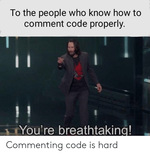 to-the-people: To the people who know how to  comment code properly.  You're breathtaking! Commenting code is hard