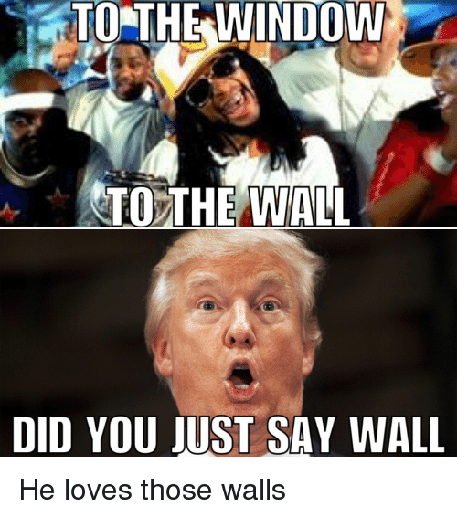 Love, Reddit, and Windows: TO THE WINDOW  TO THE WALL  DID YOU JUST SAY WALL He loves those walls