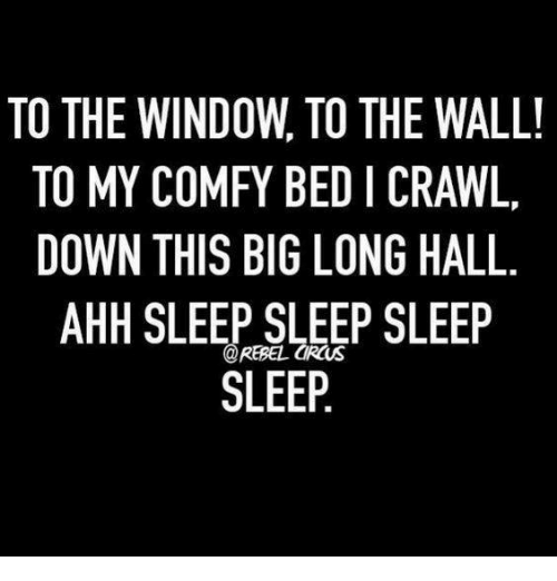 Dank, Sleep, and 🤖: TO THE WINDOW, TO THE WALL!  TO MY COMFY BED I CRAWL.  DOWN THIS BIG LONG HALL  AHH SLEEP SLEEP SLEEP  SLEEP  @REBEL CRCUS