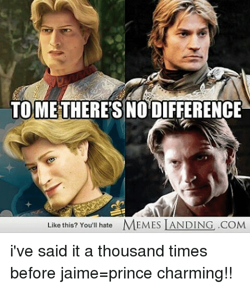 Hate Meme: TO THERES NO DIFFERENCE  Like this? You'll hate  MEMES LANDING .COM i've said it a thousand times before jaime=prince charming!!