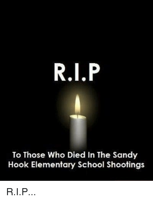 Memes, Elementary, and Hook: To Those Who Died In The Sandy  Hook Elementary School Shootings R.I.P... </3   ~Danielle <3