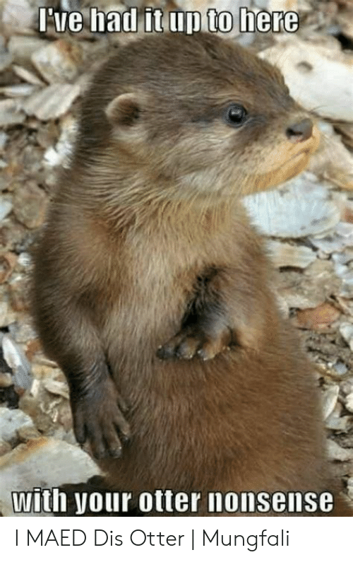 otter nonsense: to  with your otter nonsense I MAED Dis Otter   Mungfali