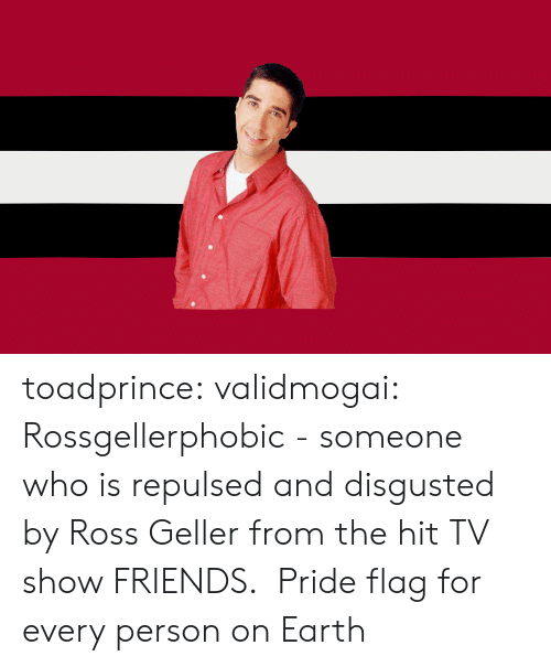 tv show: toadprince: validmogai: Rossgellerphobic - someone who is repulsed and disgusted by Ross Geller from the hit TV show FRIENDS.   Pride flag for every person on Earth