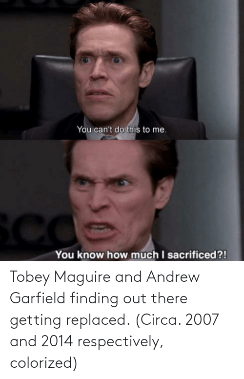 Tobey Maguire: Tobey Maguire and Andrew Garfield finding out there getting replaced. (Circa. 2007 and 2014 respectively, colorized)