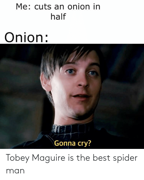 Tobey Maguire: Tobey Maguire is the best spider man
