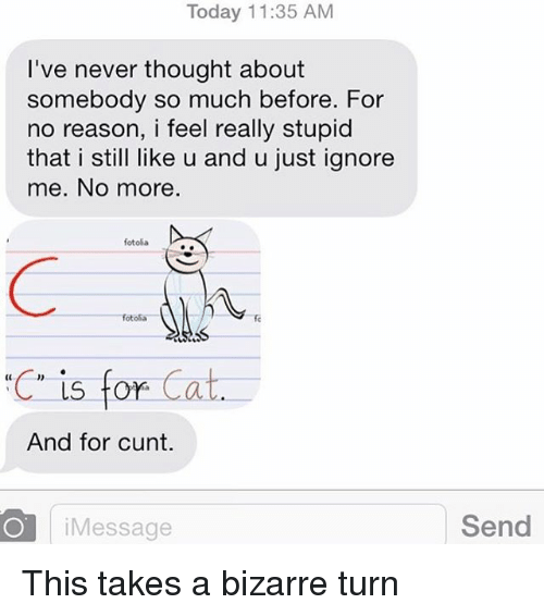 stupider: Today 11:35 AM  T've never thought about  somebody so much before. For  no reason, i feel really stupid  that i still like u and u just ignore  me. No more.  fotola  fotoSa  ·充  fc  C is for C  And for cunt.  iMessage  Send This takes a bizarre turn