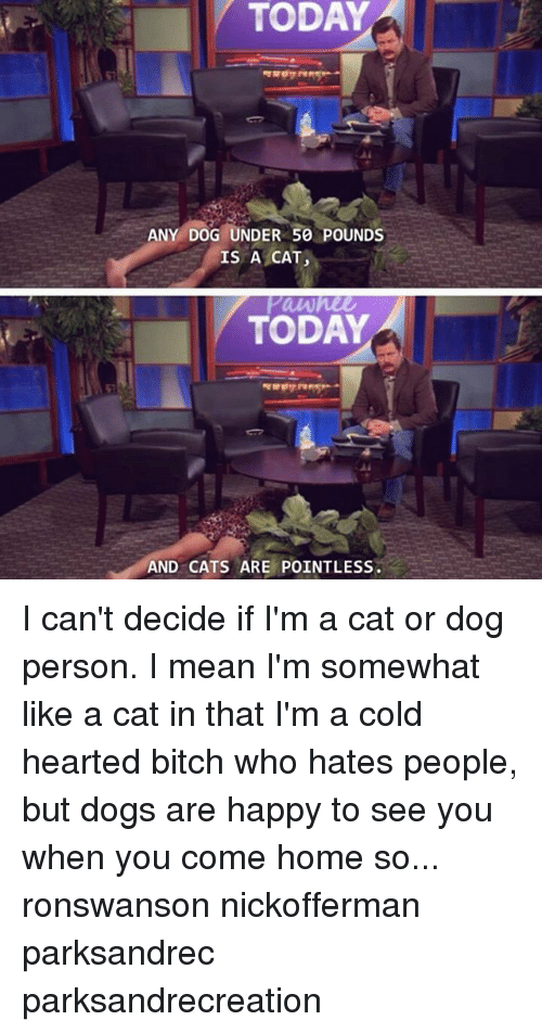 Cats, Dogs, and Memes: TODAY  ANY DOG UNDER 50 POUNDS  IS A CAT  TODAY  AND CATS ARE POINTLESS I can't decide if I'm a cat or dog person. I mean I'm somewhat like a cat in that I'm a cold hearted bitch who hates people, but dogs are happy to see you when you come home so... ronswanson nickofferman parksandrec parksandrecreation