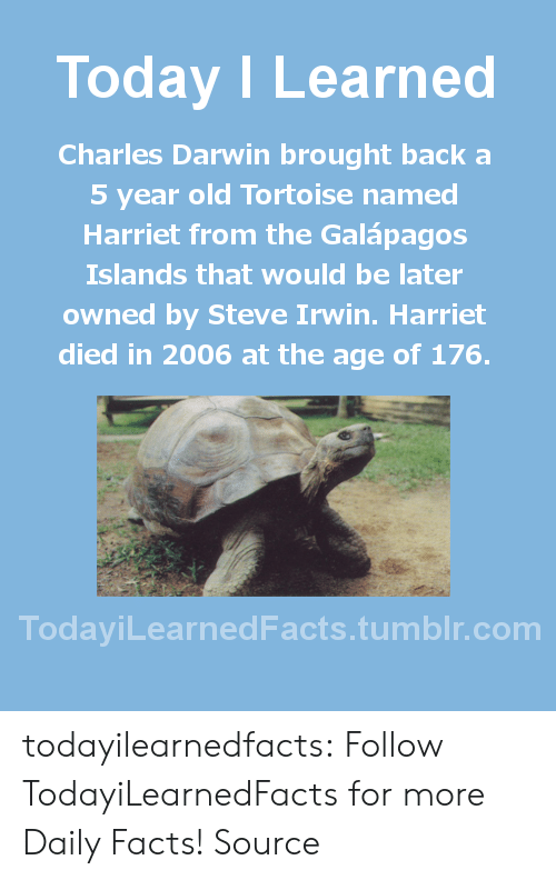 Charles Darwin: Today I Learned  Charles Darwin brought back a  5 year old Tortoise named  Harriet from the Galápagos  Islands that would be later  owned by Steve Irwin. Harriet  died in 2006 at the age of 176.  TodaviLearned Facts.tumblr.com todayilearnedfacts: Follow TodayiLearnedFacts for more Daily Facts! Source