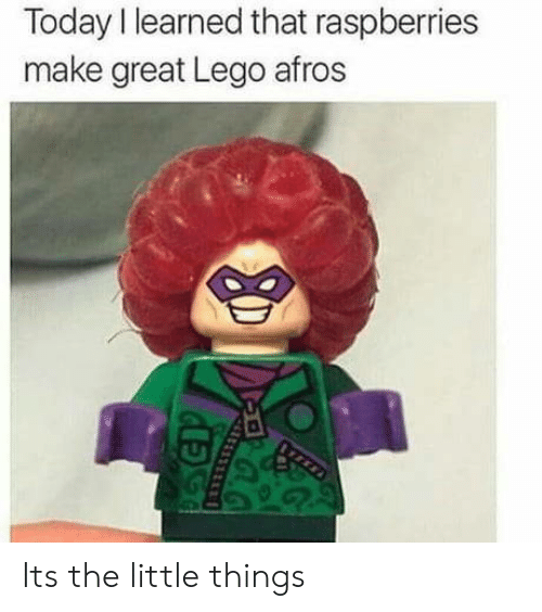 Afros: Today I learned that raspberries  make great Lego afros Its the little things