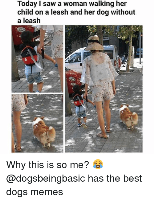 woman: Today I saw a woman walking her  child on a leash and her dog without  a leash Why this is so me? 😂 @dogsbeingbasic has the best dogs memes