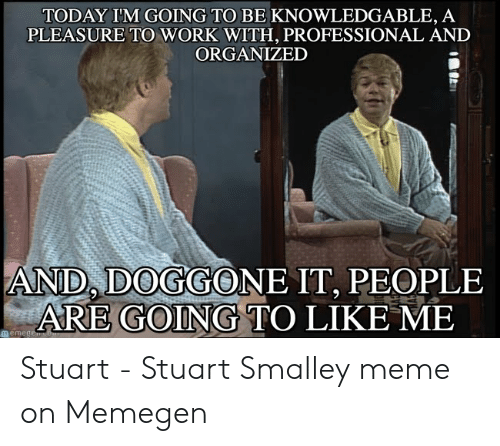 stuart smalley: TODAY IM GOING TO BE KNOWLEDGABLE, A  PLEASURE TO WORK WITH, PROFESSIONAL AND  ORGANIZED  AND, DOGGONE IT, PEOPLE  ARE GOING TO LIKE ME  用eme Stuart - Stuart Smalley meme on Memegen