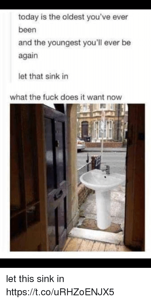 Memes, Fuck, and Today: today is the oldest you've ever  been  and the youngest you'll ever be  again  let that sink in  what the fuck does it want now let this sink in https://t.co/uRHZoENJX5