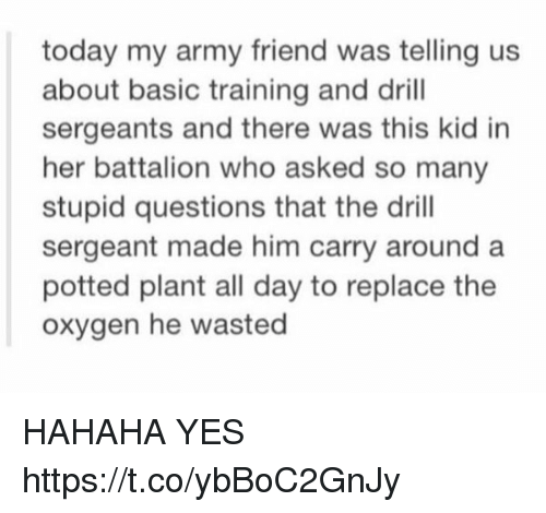 Army, Oxygen, and Today: today my army friend was telling us  about basic training and drill  sergeants and there was this kid in  her battalion who asked so many  stupid questions that the drill  sergeant made him carry around a  potted plant all day to replace the  oxygen he wasted HAHAHA YES https://t.co/ybBoC2GnJy