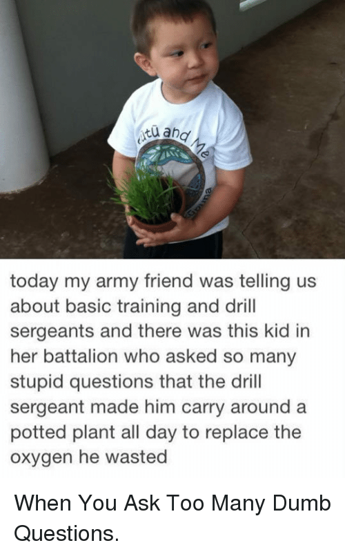 stupid questions: today my army friend was telling us  about basic training and drill  sergeants and there was this kid in  her battalion who asked so many  stupid questions that the drill  sergeant made him carry around a  potted plant all day to replace the  oxygen he wasted <p>When You Ask Too Many Dumb Questions.</p>