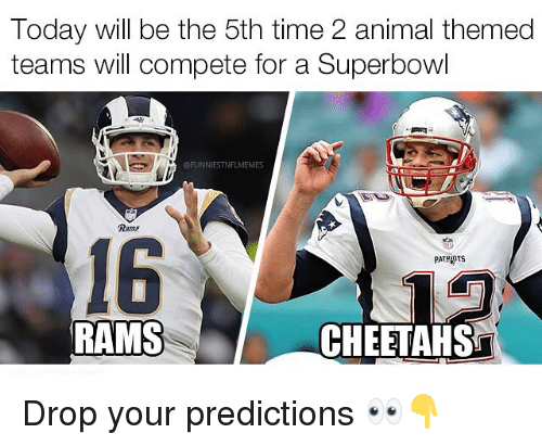 Predictions: Today will be the 5th time 2 animal themed  teams will compete for a Superbowl  FUNNIESTNFLMEMES  Rams  16  PATRIOTS  RAMS  CHEETAHS Drop your predictions 👀👇