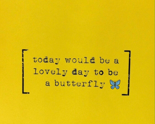 Butterfly: today would be a  Lovely day to be  a butterfly