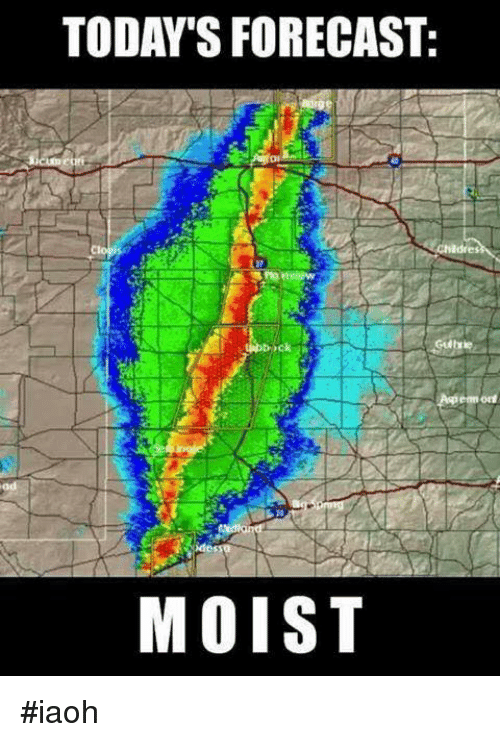 Today 39 s forecast moist iaoh funny meme on sizzle for Today s fishing forecast