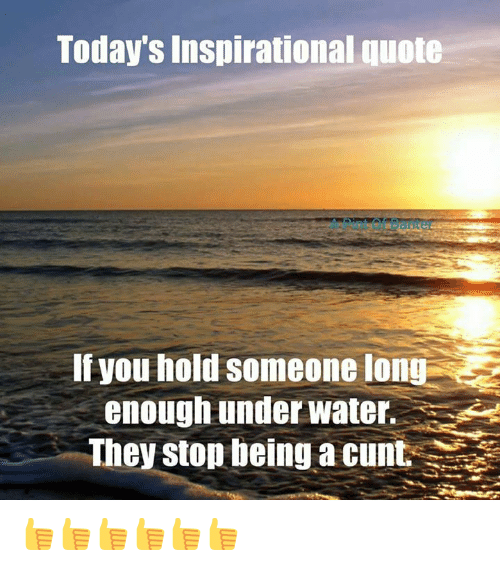 Memes, Cunt, and 🤖: Today's inspirational quote  If hold Someone long  you enough underwater.  They stop being a cunt 👍👍👍👍👍👍