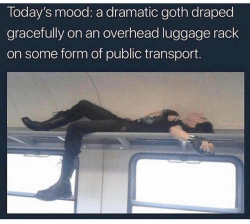 rack: Today's mood: a dramatic goth draped  gracefully on an overhead luggage rack  on some form of public transport.
