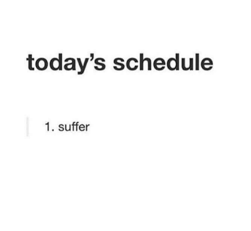 Todays: today's schedule  1. suffer