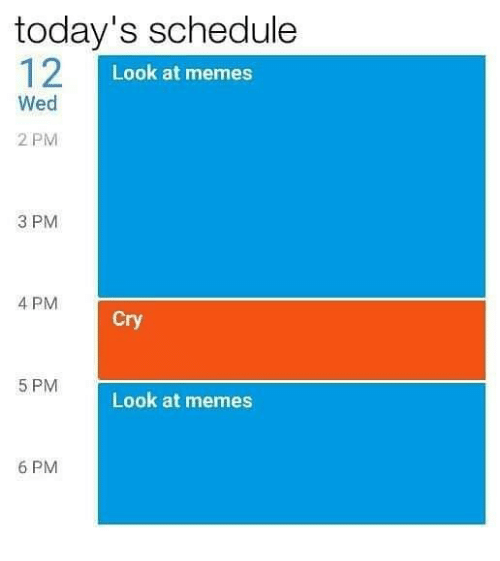 Memes, Schedule, and 🤖: today's schedule  12  Look at memes  Wed  2 PM  3 PM  4 PM  Cry  5 PM  Look at memes  6 PM