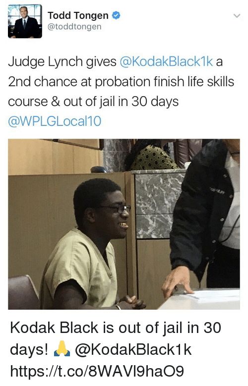 Jail, Life, and Memes: Todd Tongen  atoddtongen  Judge Lynch gives  KodakBlackmka  2nd chance at probation finish life skills  course & out of jail in 30 days  @WPLGLocal 10 Kodak Black is out of jail in 30 days! 🙏 @KodakBlack1k https://t.co/8WAVl9haO9