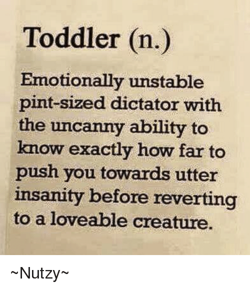 Memes, Pint, and Ability: Toddler (n.)  Emotionally unstable  pint-sized dictator with  the uncanny ability to  know exactly how far to  push you towards utter  insanity before reverting  to a loveable creature. ~Nutzy~