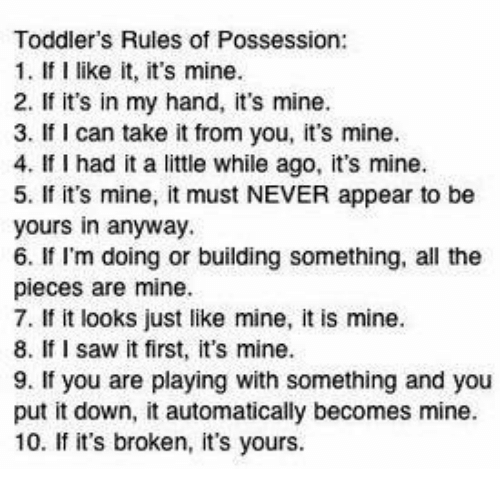 Toddlers Rules Of Possession 1 If I Like It Its Mine 2