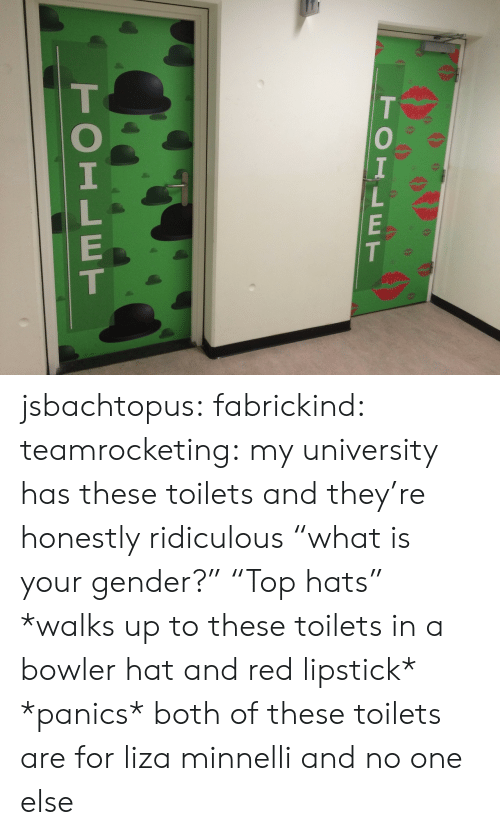"""toilets: TOILET  TOILET jsbachtopus: fabrickind:   teamrocketing:  my university has these toilets and they're honestly ridiculous  """"what is your gender?"""" """"Top hats""""   *walks up to these toilets in a bowler hat and red lipstick* *panics*   both of these toilets are for liza minnelli and no one else"""