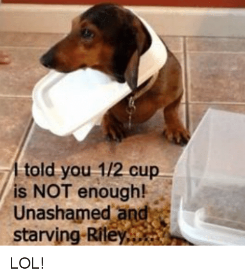 Memes, 🤖, and Starving: told you 1/2 cup  is NOT enough!  Unashamed and  starving Rite LOL!