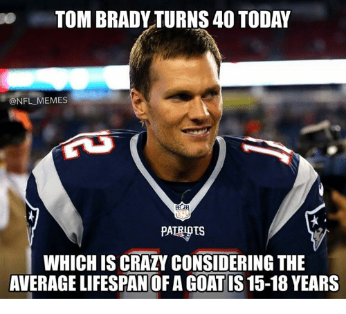 Crazy, Memes, and Nfl: TOM BRADY TURNS 40 TODAY  @NFL MEMES  PATRIOIS  WHICH IS CRAZY CONSIDERING THE  AVERAGE LIFESPAN OF A GOAT IS 15-18 YEARS