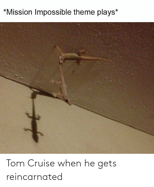 Tom Cruise: Tom Cruise when he gets reincarnated
