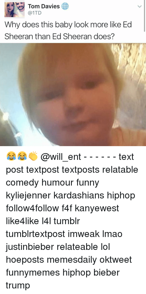 Memes, 🤖, and Eds: Tom Davies  @1TD  Why does this baby look more like Ed  Sheeran than Ed Sheeran does? 😂😂👏 @will_ent - - - - - - text post textpost textposts relatable comedy humour funny kyliejenner kardashians hiphop follow4follow f4f kanyewest like4like l4l tumblr tumblrtextpost imweak lmao justinbieber relateable lol hoeposts memesdaily oktweet funnymemes hiphop bieber trump