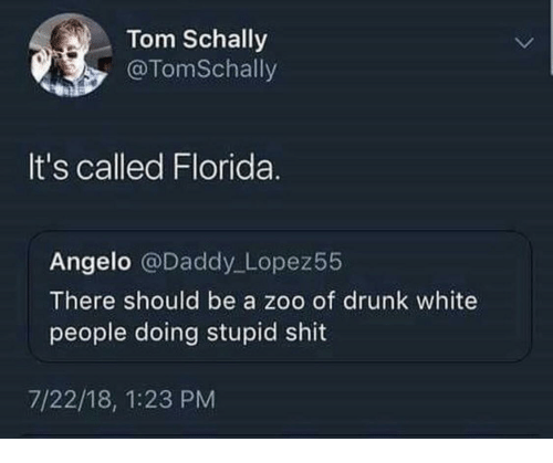 angelo: Tom Schally  @TomSchally  It's called Florida.  Angelo @Daddy Lopez55  There should be a zoo of drunk white  people doing stupid shit  7/22/18, 1:23 PM