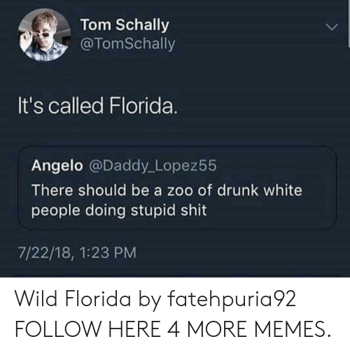 angelo: Tom Schally  @TomSchally  It's called Florida.  Angelo @Daddy Lopez55  There should be a zoo of drunk white  people doing stupid shit  7/22/18, 1:23 PM Wild Florida by fatehpuria92 FOLLOW HERE 4 MORE MEMES.