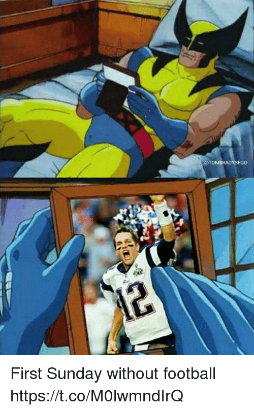 Football, Tom Brady, and Sunday: @TOMBRADYSEGO First Sunday without football https://t.co/M0lwmndIrQ
